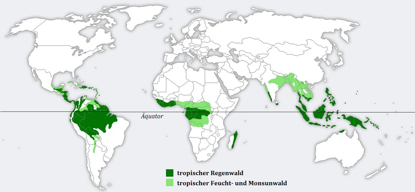 bosque tropical en el mundo