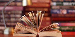texto literario desde la lingüística
