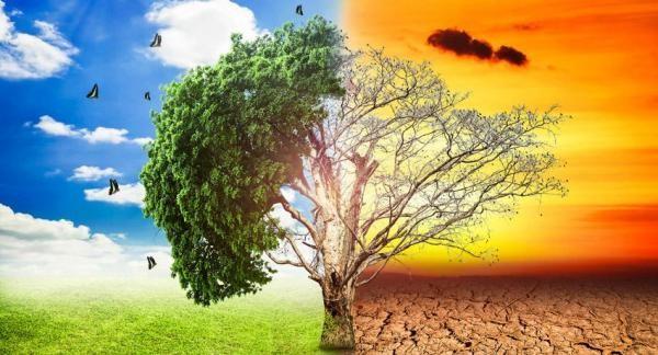impacto ambiental tipos