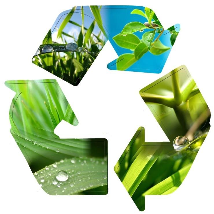 desarrollo sustentable ejemplos