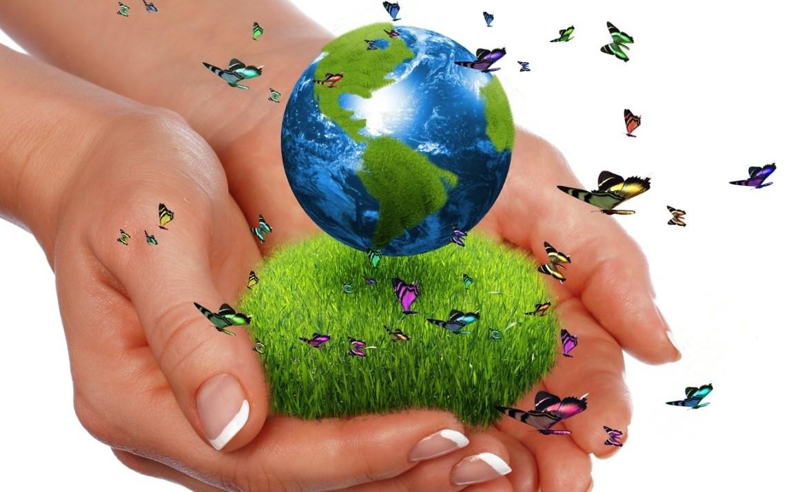 impacto ambiental definición
