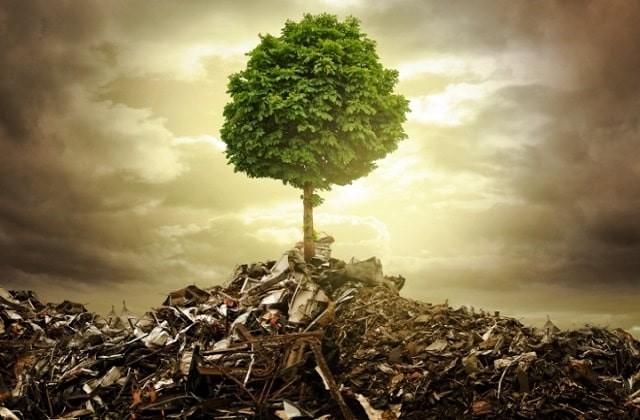contaminación del suelo causas y consecuencias