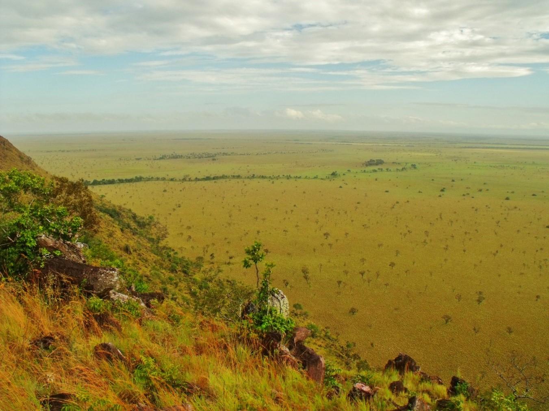 regiones naturales llanura