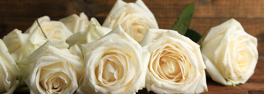 soñar con rosas amarillas y blancas