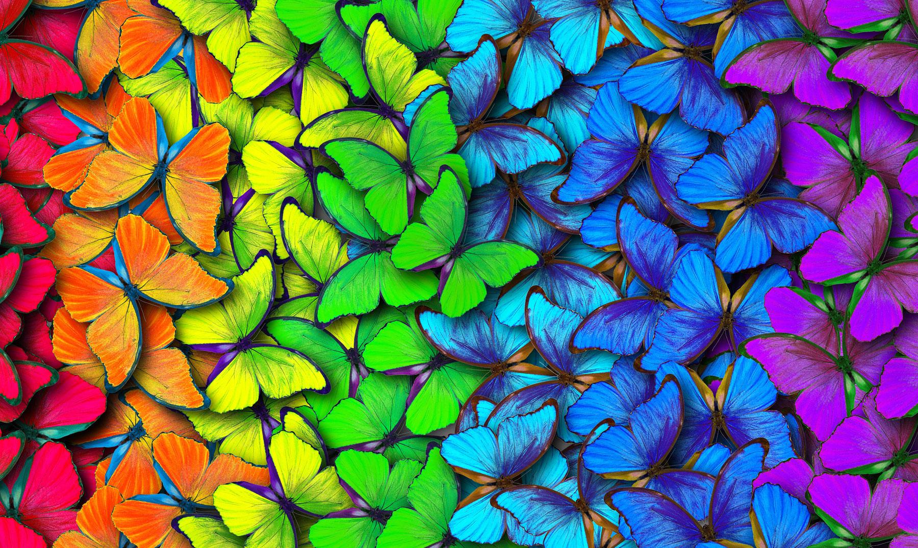soñar con colores vivos
