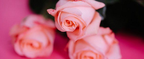 soñar con color rosado misabueso