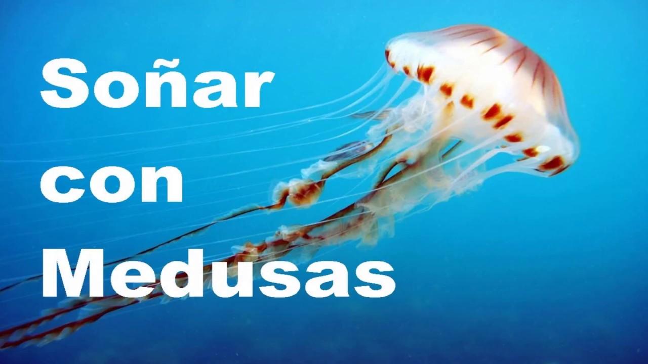 soñar con medusas muertas