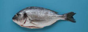 Soñar con pescado