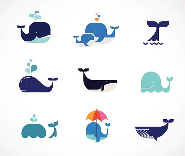 soñar con ballenas y delfines
