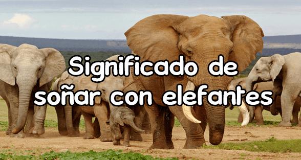 soñar con elefantes gigantes