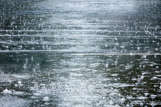 soñar con lluvia misabueso