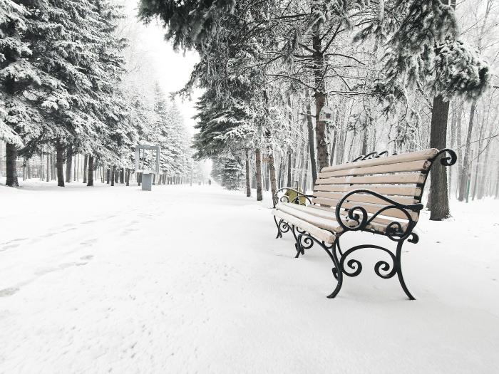 soñar con nieve y hielo