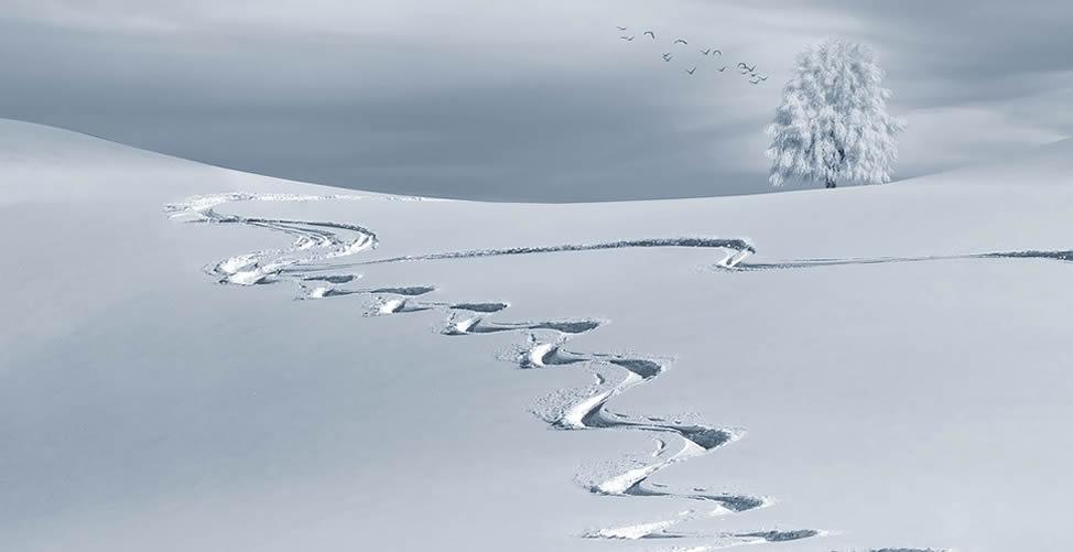 soñar con nieve artificial